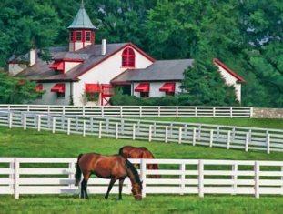 После оценки знаменитые конюшни «Calumet Farm» проданы за 36 миллионов долларов
