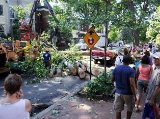 Ущерб от разгула стихии в США оценят независимые эксперты